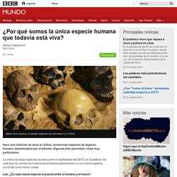 ¿Por qué somos la única especie humana que todavía está viva? - BBC Mundo