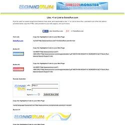 Sonic Run: Internet Search Engine