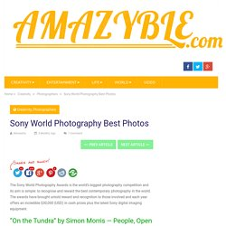 Sony World Photography Best Photos