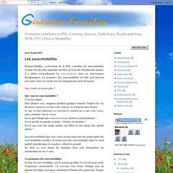 Génération Formation : PNL, Coaching, Hypnose, Sophrologie, Psychopathologie...: Les sous-modalités