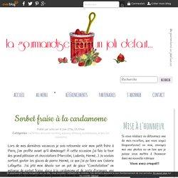 Sorbet fraise à la cardamome - la gourmandise est un joli défaut