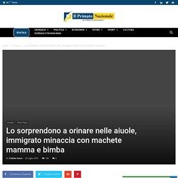 Lo sorprendono a orinare nelle aiuole, immigrato minaccia con machete mamma e bimba