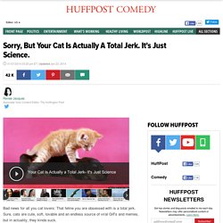 Sorry, But Your Cat Is Actually A Total Jerk. It's Just Science.