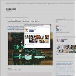 Juin 2014 : les sorties sneakers (Jordan 6 Brazil, Puma Evo Mesh…)