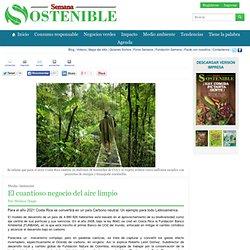 www.sostenibilidad.semana.com/medio-ambiente/articulo/el-cuantioso-negocio-del-aire-limpio/31388
