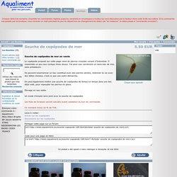 Souche de copépodes de mer - 5.50 EUR