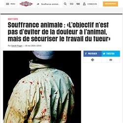 Souffrance animale : «L'objectif n'est pas d'éviter de la douleur àl'animal, mais de sécuriser le travail dutueur»