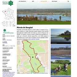 Marais de Sougéal