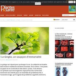 LE GINKGO, UN SOUPÇON D'IMMORTALITÉ - Plantes & santé