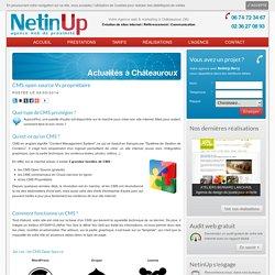 CMS open source Vs propriétaire - NetinUp Berry