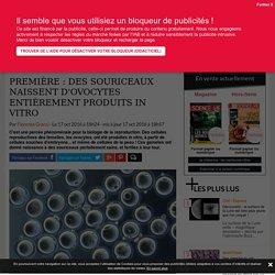 Première : des souriceaux naissent d'ovocytes entièrement produits in vitro - Science-et-vie.com