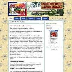 Du Sud-Est du Texas tomate Festival »Conseils de culture