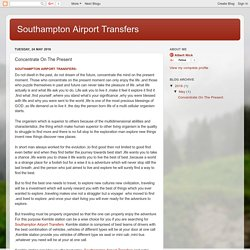 Southampton Airport Transfers: Concentrate On The Present