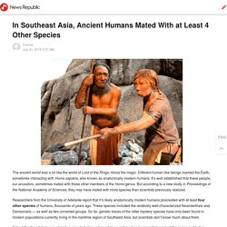 In Southeast Asia, Ancient Humans Mated With at Least 4 Other Species