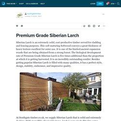 Premium Grade Siberian Larch: southgatetimber
