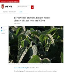 UNIVERSITY OF WINCONSIN-MADISON 30/03/15 For soybean growers, hidden cost of climate change tops $11 billion