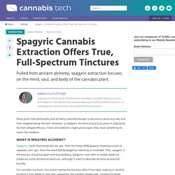 Spagyric Cannabis Extraction Offers True, Full-Spectrum Tinctures