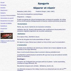 Spagyrie signifie Séparer et réunir