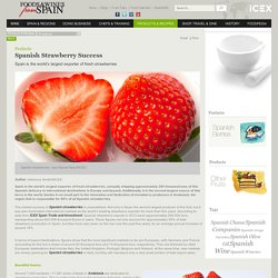 FOODS & WINES FROM SPAIN - Spanish Strawberry Success - Spain is the world's largest exporter of fresh strawberries