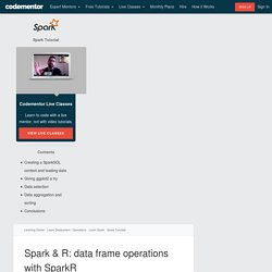 Spark & R: data frame operations with SparkR