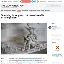 Speaking in tongues: the many benefits of bilingualism