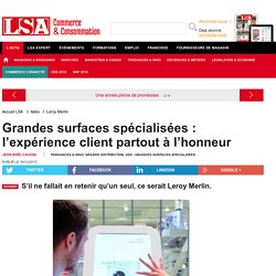 Grandes surfaces spécialisées :... - Enquêtes sur la consommation en France