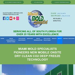 Miami Mold Specialists Pioneers New Mobile Onsite Dry Clean CO2 Deep Freeze Technology