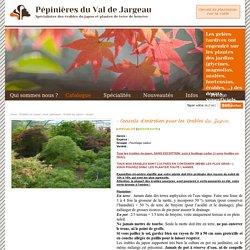 Pépinière du val de jargeau - Spécialité érable du Japon - ERABLE, HOUX, AZALEE, BRUYERES, RHODODENDRONS