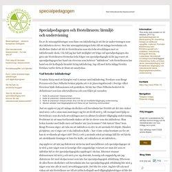 Specialpedagogen och försteläraren: lärmiljö och undervisning