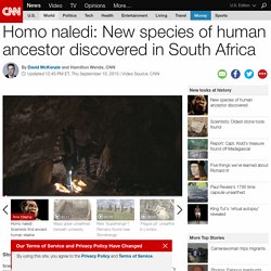 Homo naledi: New species of human ancestor discovered