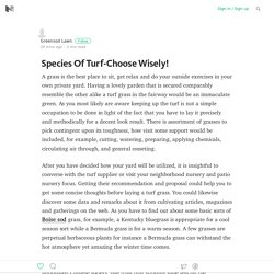 Species Of Turf-Choose Wisely!