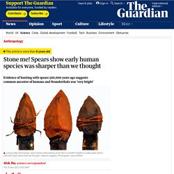 Stone me! Spears show early human species was sharper than we thought