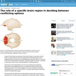 The role of a specific brain region in deciding between conflicting options