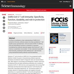 SARS-CoV-2 T cell immunity: Specificity, function, durability, and role in protection
