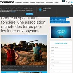 Contre la spéculation foncière, une association rachète des terres pour les louer aux paysans