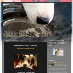 Speedoggie... the blog