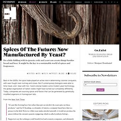 Spices Of The Future: Now Manufactured By Yeast?
