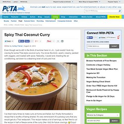 Vegan Spicy Thai Coconut Curry Recipe