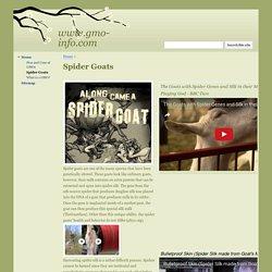 Spider Goats - www.gmo-info.com
