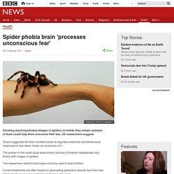 Spider phobia brain 'processes unconscious fear'