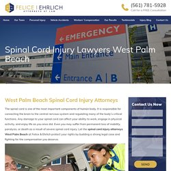 Spinal Cord Injury Attorneys West Palm Beach - Felice and Ehrlich