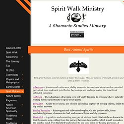 Spirit Walk Ministry - Bird Animal Spirits