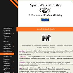 Spirit Walk Ministry - Land Animal Spirits