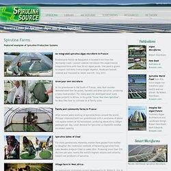 Spirulina Source » Spirulina Farms