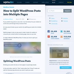 Pagination: How to Split a WordPress Post into Multiple Pages