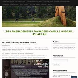 ...BTS AMENAGEMENTS PAYSAGERS CAMILLE GODARD... LE HAILLAN