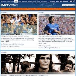 Der Sieg gegen Argentinien - die schönsten O-Töne - Mediabox - F