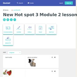 New Hot spot 3 Module 2 lesson 7 Flashcards