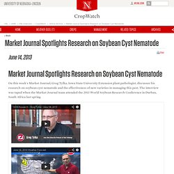 UNIVERSITY OF NEBRASKA-LINCOLN 14/06/13 Market Journal Spotlights Research on Soybean Cyst Nematode