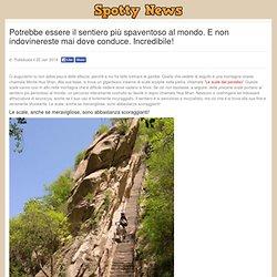 Spotty News